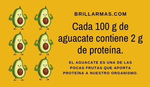aguacate proteínas